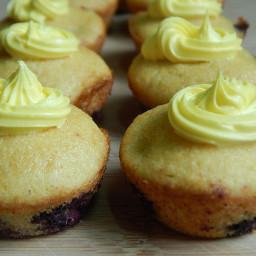 Mini blueberry lemon cupcakes
