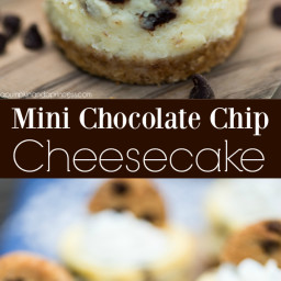 Mini Chocolate Chip Cheesecakes