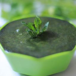 Mint Coriander Chutney Recipe | How to make Green Coriander Chutney Recipe