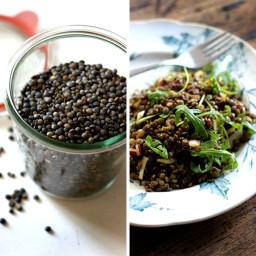 Moroccan-inspired Lentil Salad