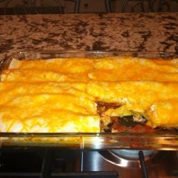 mouthwatering-chicken-enchiladas-wi-5.jpg