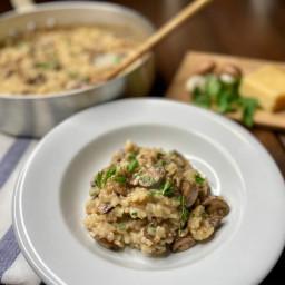 Mushroom Risotto with Parmigiano Reggiano and Fresh Italian Parsley