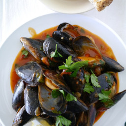 Mussels cooked in pasta sauce