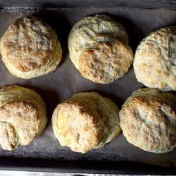 my-favorite-buttermilk-biscuitsadap.jpg