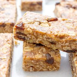 No Bake Oatmeal Raisin Granola Bars (Vegan, Gluten Free)