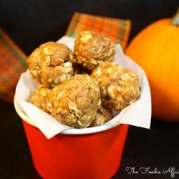 No-Bake Pumpkin Protein Bites