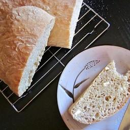 no-knead ciabatta
