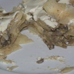 north-croatian-mushrooms-and-pasta--2.jpg