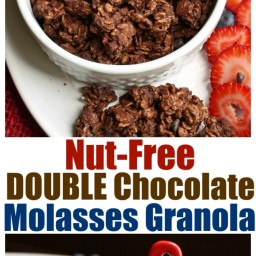 Nut-Free Double Chocolate Molasses Granola