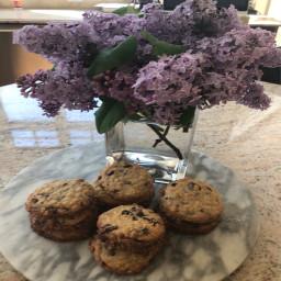 oatmeal-chocolate-chip-cookies-a9260d3480c794506b7f4037.jpg