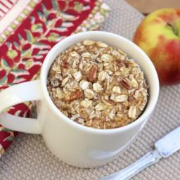 Oatmeal Packet Mug Muffin