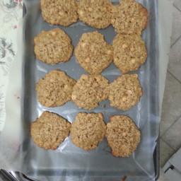 oatmeal-scotchies-9.jpg