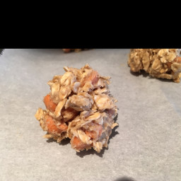oatmeal-scotchies-f1d997.jpg