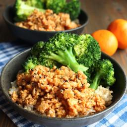 Orange Ground Chicken Rice Bowls