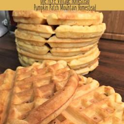 overnight-yeast-waffles-dba3ad-736a8ea06bb94184a8485417.jpg