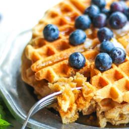 paleo-amp-aip-cassava-flour-waffles-one-bowl-with-sourdough-variation-2685986.jpg