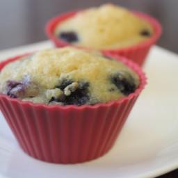 paleo-blueberry-lemon-muffins-3941c2.jpg