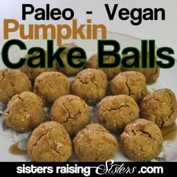 Paleo Vegan Pumpkin Cake Balls