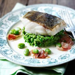 Pan-fried cod with minted peas, broad beans and pancetta