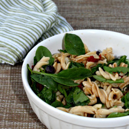 Pasta Salad with Baby Spinach and Sun Dried Tomatoes
