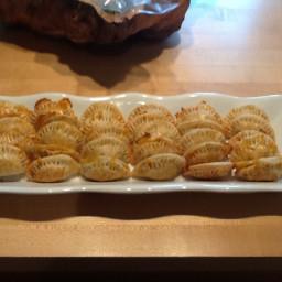 Paula Deen's Spicy Chicken Empanadas