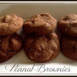 Peanut Brownie Biscuits