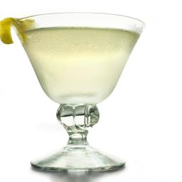 Perfect Gin Martini