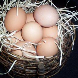 pizza-stuffed-eggs-3.jpg