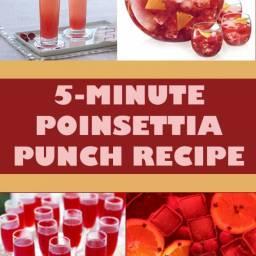 Poinsettia Punch Recipe