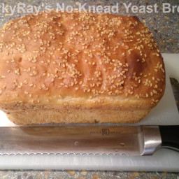 No-Knead Yeast Bread