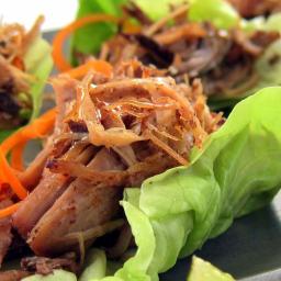 Pressure Cooker Pulled Pork Recipe - Carnitas