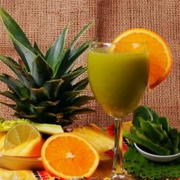 prickly-pear-cactus-punch-liquado-d.jpg