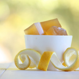 Probiotic Infused Lemon Jello