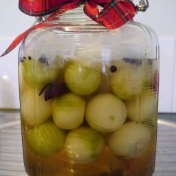 Probiotic pickled onion recipe