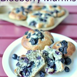 Protein Packed Blueberry Muffins