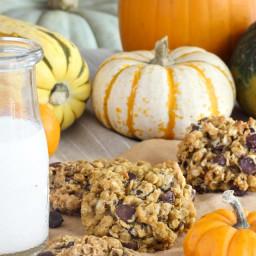 pumpkin-oatmeal-chocolate-chip-cookies-2275673.jpg