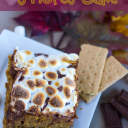 Pumpkin S'mores Cake #ThisisWholesome