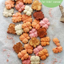 Pumpkin Spice Spritz Cookies | Cookies for Kids' Cancer