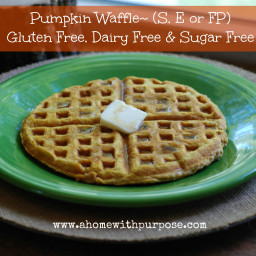 Pumpkin Waffle (Diary free, Gluten Free and Sugar Free)