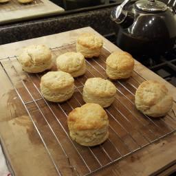 Quick Food Processor Biscuits