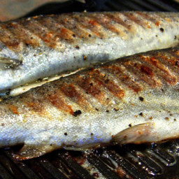Quick Grilled Trout