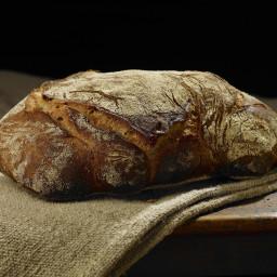 Quick-Rising Sourdough Bread
