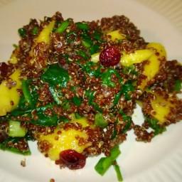 quinoa-and-mango-salad-4.jpg