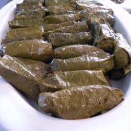 "Quinoa Stufffed Grape Leaves – ""Dolmathes"""