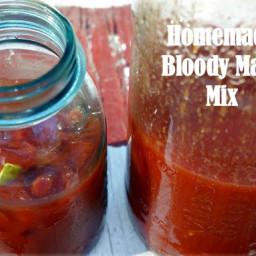 Really Homemade Bloody Mary Mix