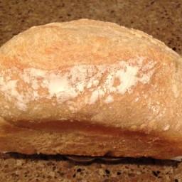 Refrigerator no knead bread