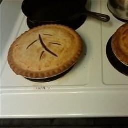 Rhubarb Custard Pie I