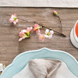Rhubarb-Ginger Bellini