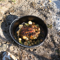 Roast Garlic Chicken al Fresco