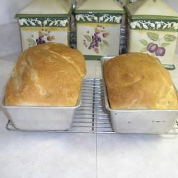 Rustic Sourdough Amish Friendship Bread
